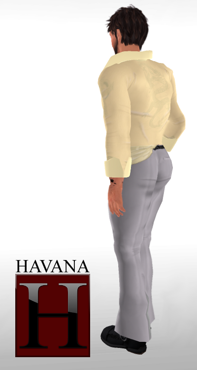 Freebie: Havana After Hours Outfit (back view)
