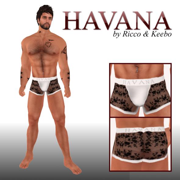 Havana Sheer Boxer Briefs in black and white