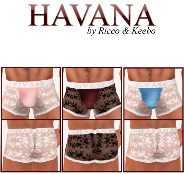 Havana Sheer Boxer Briefs: white and salmon, black and wine, white and blue