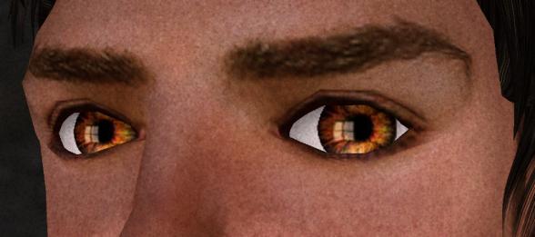 Flame Eyes by Fleur Ferris